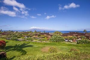 Maui Hawaii - Peaceful - Quite - Luxury - Avail Jan.10-Feb 28
