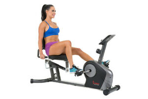 Sunny Health & Fitness SF-RB4602 Recumbent Exercise Bike