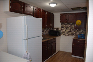 VERY BRIGHT WALKOUT BASEMENT FOR RENT