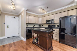 Pet-Friendly Downtown Condo with Underground Parking