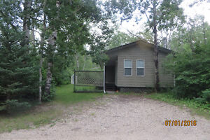 Cabin for Sale -Clear Lake -Grey Owl Estates