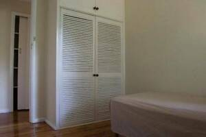 Room in quiet Street close to TOP RYDE Shopping cetre Ryde Ryde Area Preview