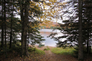 Mont Tremblant Park (Sepaq) cabin available THIS WEEKEND.