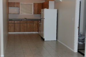 A large above ground basement suite for rent,