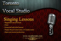 Singing lessons.   High level training.