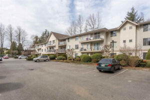 Beautiful, Private, 3 Bedroom Condo For Rent