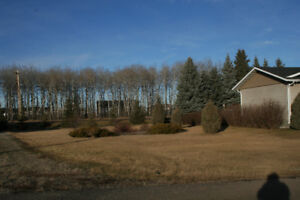 BUILDING LOT - MATURE AREA - CARBERRY, MB