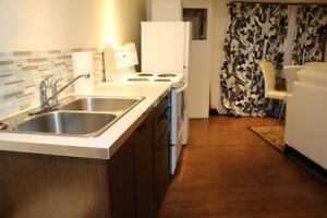 Beautiful Executive All Included Walkout Basement Apartment