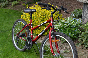 GIRLS YOUTH BIKE FOR SALE