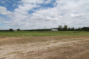29.04 acres to build your dream home