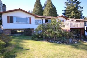 North Delta House for sale - 11764 Cowley Dr