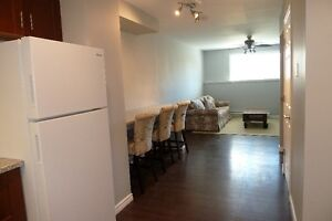 Avail. Jan 30/17 Lower 2 Bdrm, 2 Level Fully Furnished Apartment