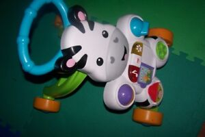 music cow for sale