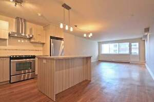 3 1/2 - Downtown (Golden Mile) luxury building, many amenities