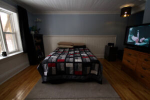 Room for rent / Feb 1st / Downtown house on Gower St. / 550 POU
