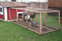 Wanted:  Used Lumber for Chicken Coop