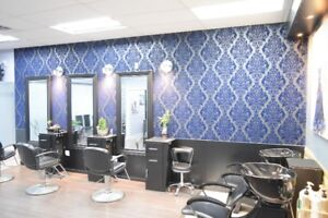 HAIR SALON & SPA for Sale / Mississauga (905-616-6716)