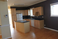 Gorgeous recently renovated 3 Bedroom, 2 bathroom house for rent