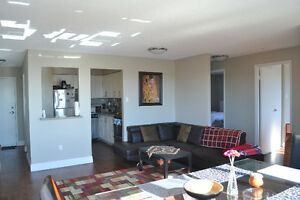 Large bedrooms in a furnished 2BDR apartment available Jan 1st Kitchener / Waterloo Kitchener Area image 6