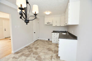 Newly Renovated -- Hespeler Town House