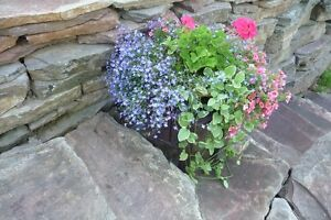 *** FLAGSTONE *** - patios & flowerbeds *** LANDSCAPING ***