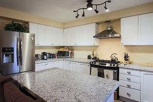 Best Prices On Quartz Kitchen Countertops