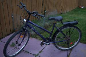 26' Renegade Mountain Bicycle / rain deflectors