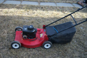 Champion rear bagging mower