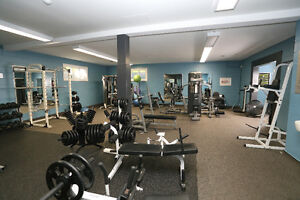 Renovated 2 Bedroom Townhomes! London Ontario image 5