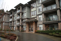The Sterling - Private 1 Bdrm Condo - 9' Ceilings $175,000