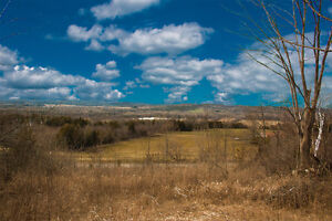 1 + acre Country building lot for sale in Brighton Ontario