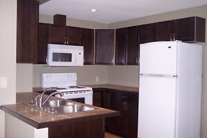 1 Bedroom Ground level Basement suite for Student