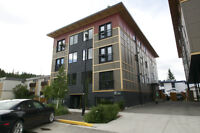 Beautiful and Energy Efficient Condo on Main