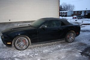 2010 Ford Mustang Autre