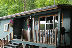 Cottage for sale on beautiful Chandos Lake, Apsley