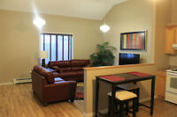 Estevan Fully Furnished Executive Style Two &Three Bedroom Suite