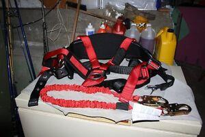 harness Gatineau Ottawa / Gatineau Area image 1
