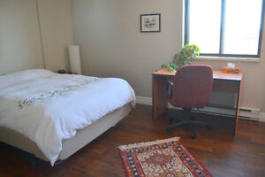 Large bedrooms in a furnished 2BDR apartment available Jan 1st Kitchener / Waterloo Kitchener Area image 3