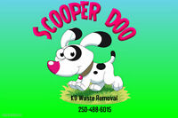 Scooper Doo K9 Waste Removal Service