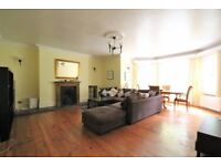 Large Double in 2 bed flat, Stoke Newington