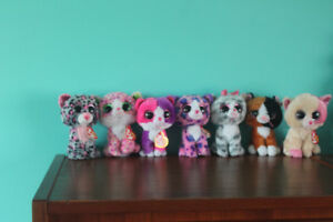 7 Cat Beanie Boos Excellent Condition With Tags