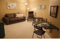 Beautiful Basement for rent for June , July And  August only