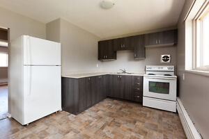 3 bedroom - RENOVATED unit in renovated building!