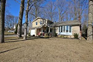 This Property Has One Of The Best Lots In All Of Newmarket