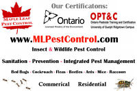 Pest Control 1-888-780-BUGS(2847) Ants Bed Bugs Mice Cockroach