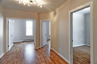 Spacious & Cozy 4 1/2 apartement near downtown