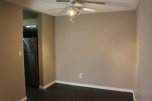 Two Bedroom Apartment Condo For Rent