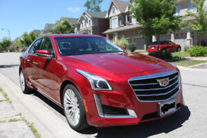 Drive the remaining 14 months of this Luxury Cadillac!