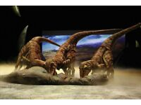 WALKING WITH DINOSAURS - 2 x VIP TICKETS 02 ARENA LONDON SATURDAY 18TH AUGUST 2018