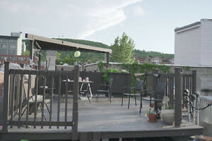 7.5 Plateau Apartment With Rooftop Terrace - September Lease